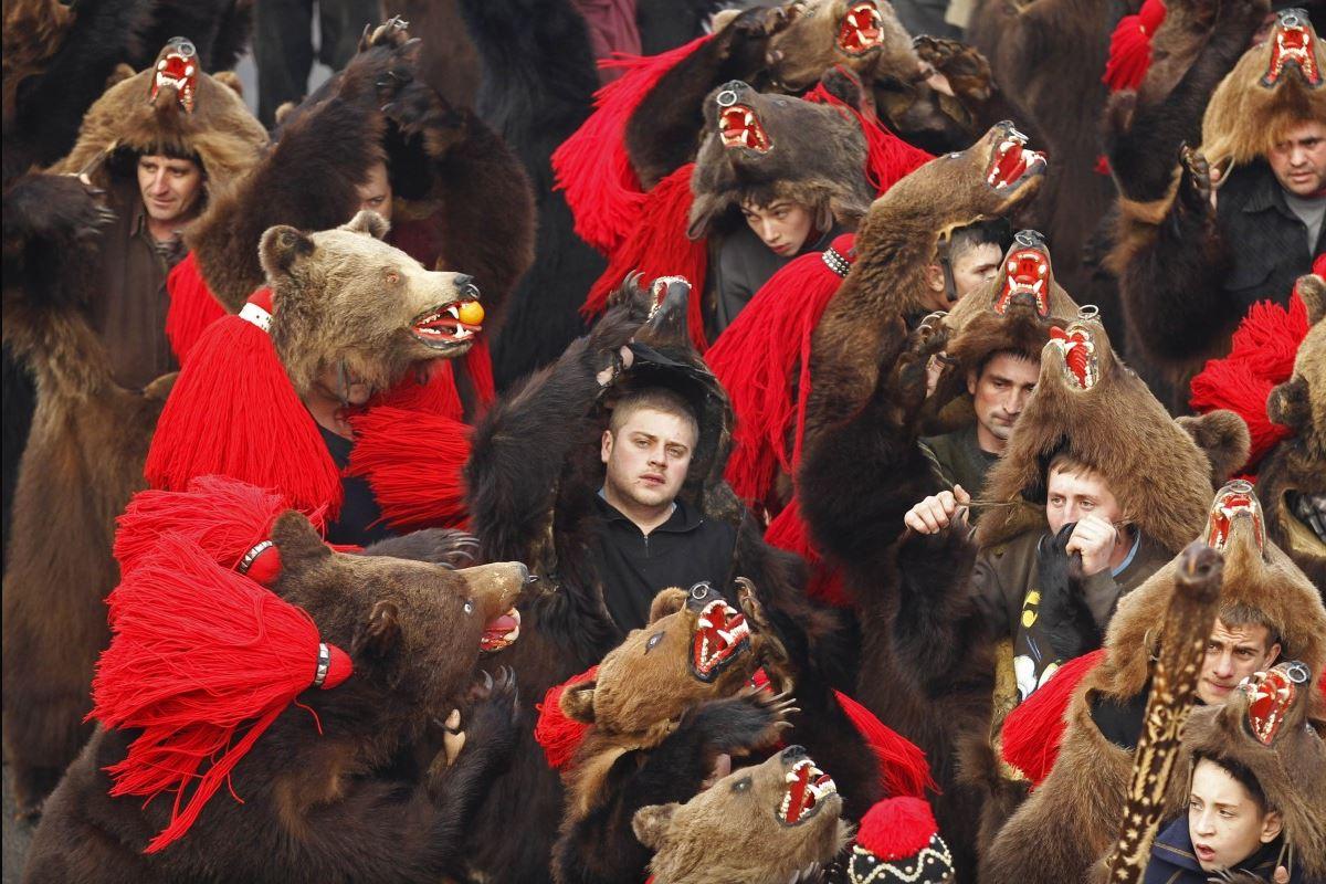 Парад медведей в Коменешти