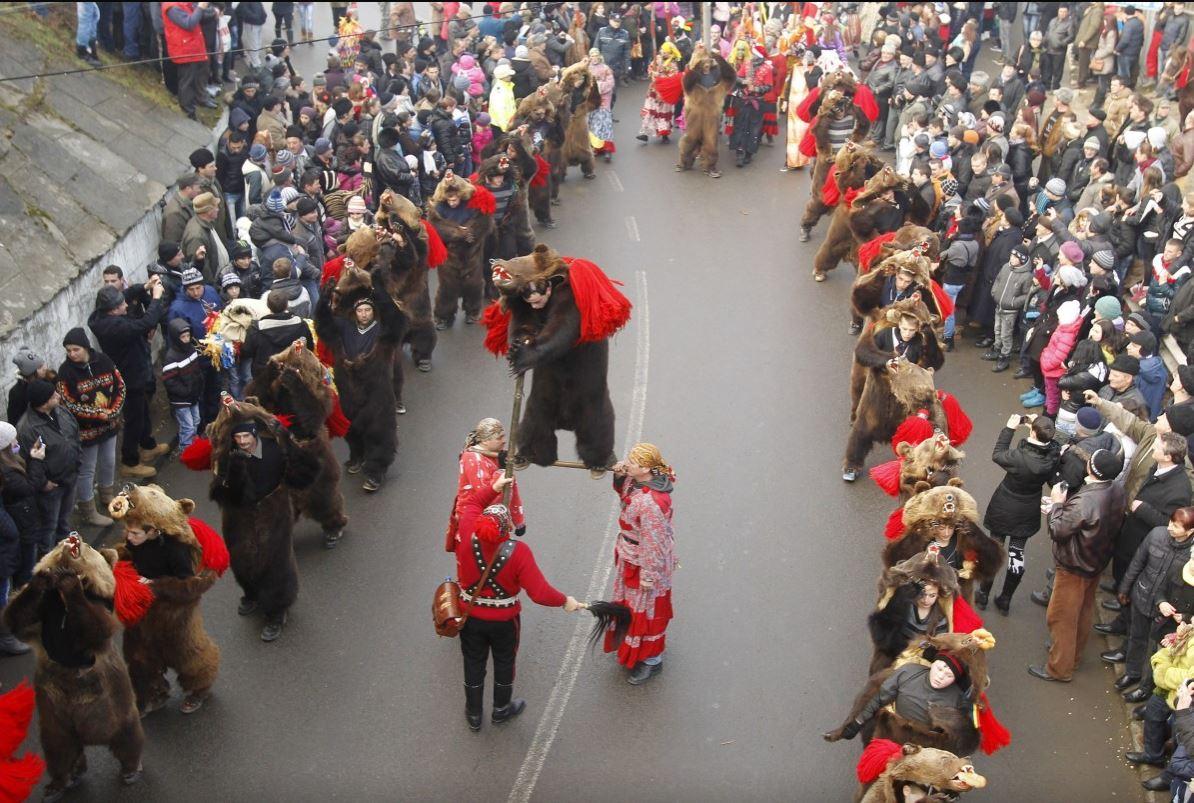 Парад медведей, шкуры медведей, шествие медведей