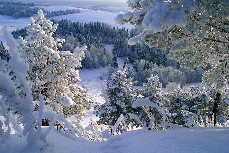 11 января - Всероссийский день заповедников и национальных парков