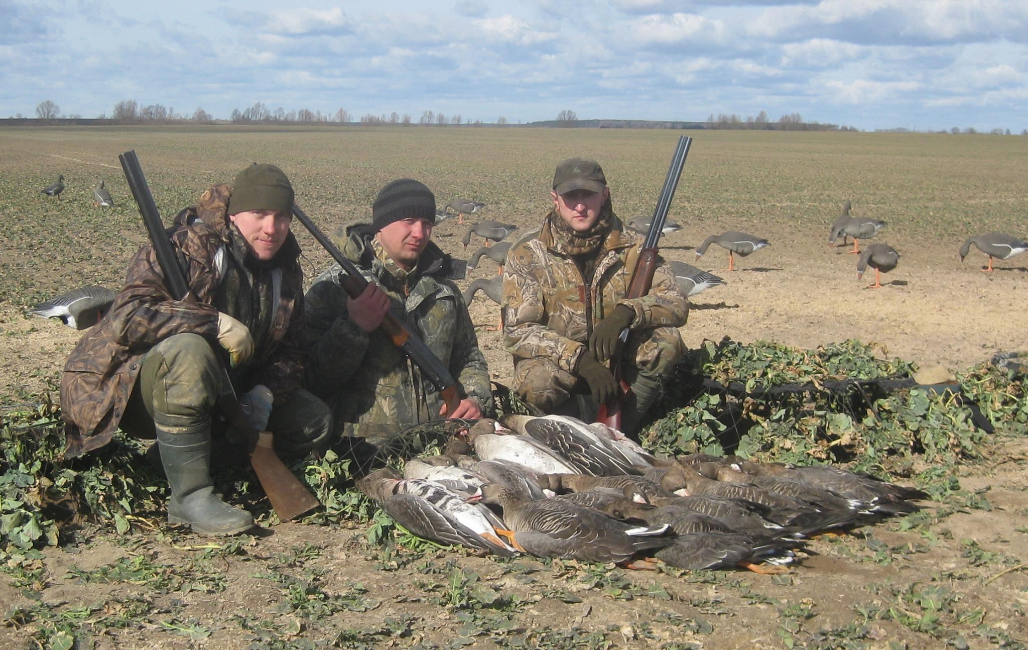 Картинки птицы весной охота строго запрещена