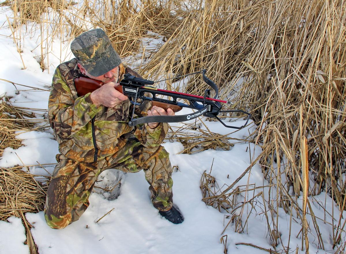 Самый дешевый охотничий арбалет Интерлопер Скорпион (Jaguar)