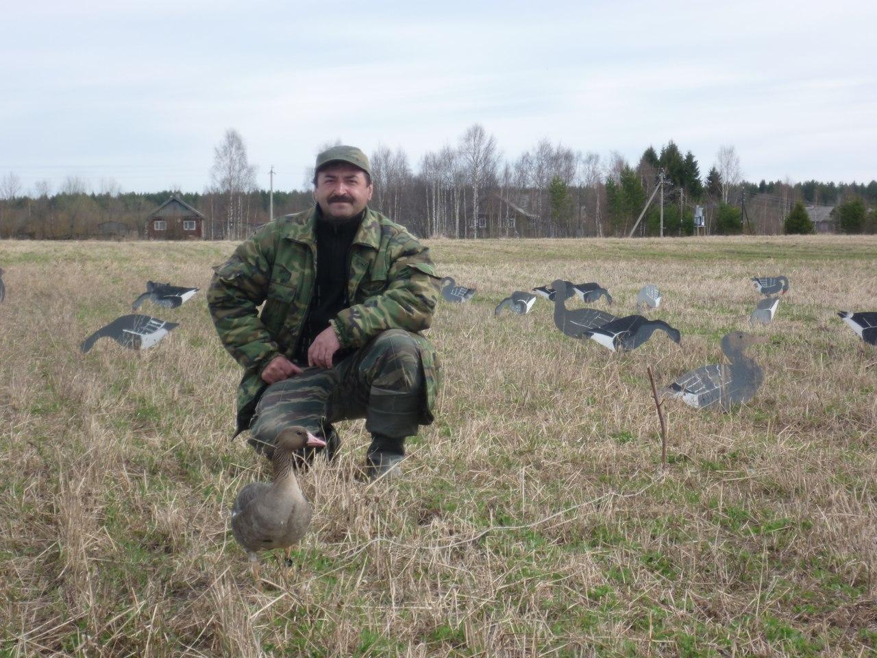 Охота на гуся с чучелами