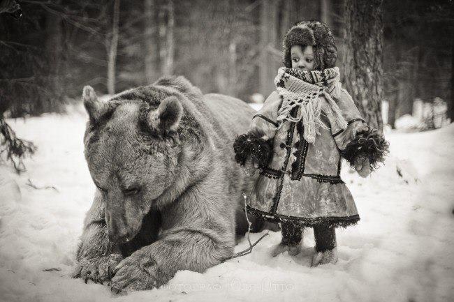 бурый медведь, как себя вести при встрече с медведем