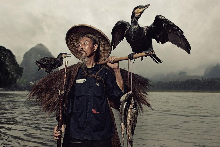 Рыбалка с бакланами в китае