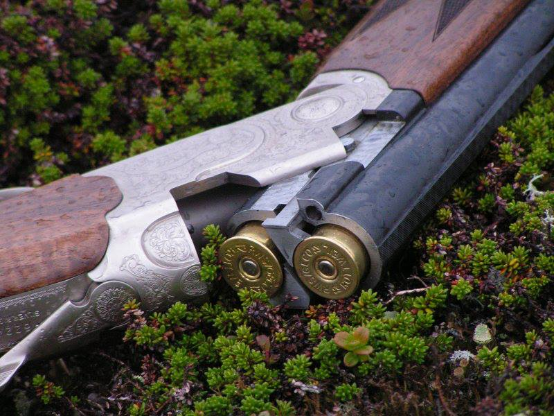 Проверка и оценка боя гладкоствольного охотничьего ружья
