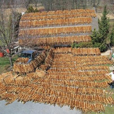 Сапоги комбинезон для рыбалки