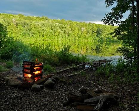 Выживание в лесу, что можно есть в лесу