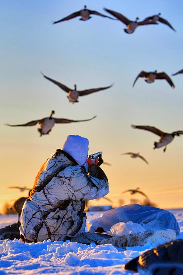 Охота на гусей из блиндажа: Как построить гусиный блиндаж и зачем это нужно