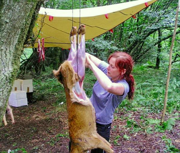 Шкура оленя и лося, несправедливое пренебрежение - как выделать и изготовить настенный ковер