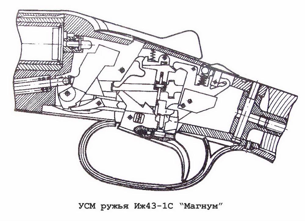 Охотничье двуствольное ружье ИЖ-43-1С