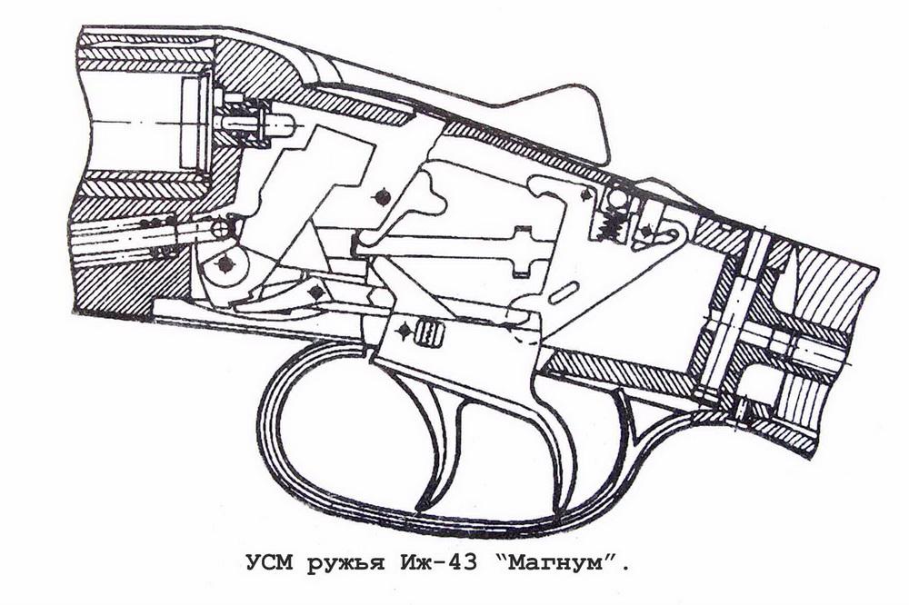Охотничье двуствольное ружье ИЖ-43