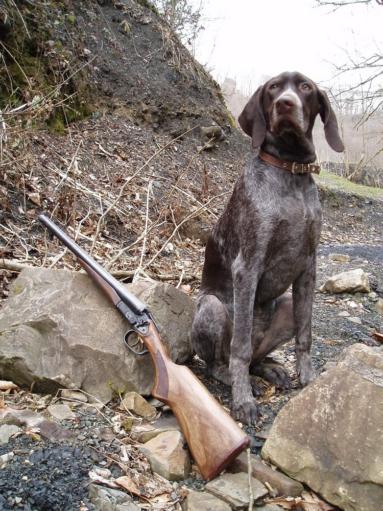 Охотничье двуствольное ружье ИЖ-43КН