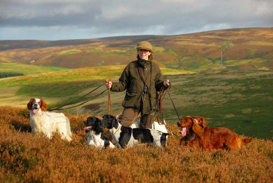 Охотничьи собаки - советы собаководам