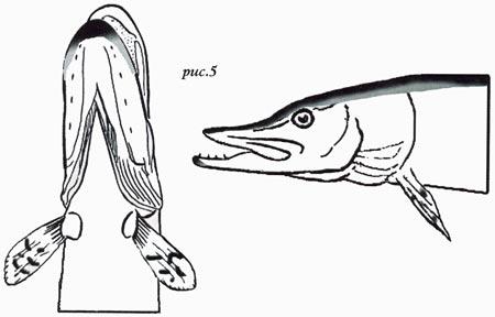 изготовить сушеную голову рыбы
