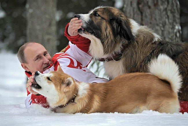 Владимир Путин с собаками, Йорго и карелка