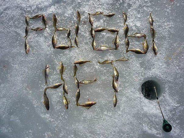 Эхолот для береговой рыбалки