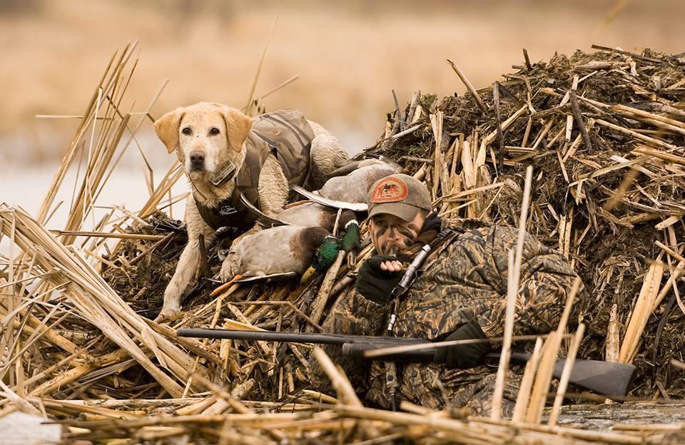 Засидка на утку, камуфляж для утиной охоты камуфляж для охоты на водоплавающую птицу