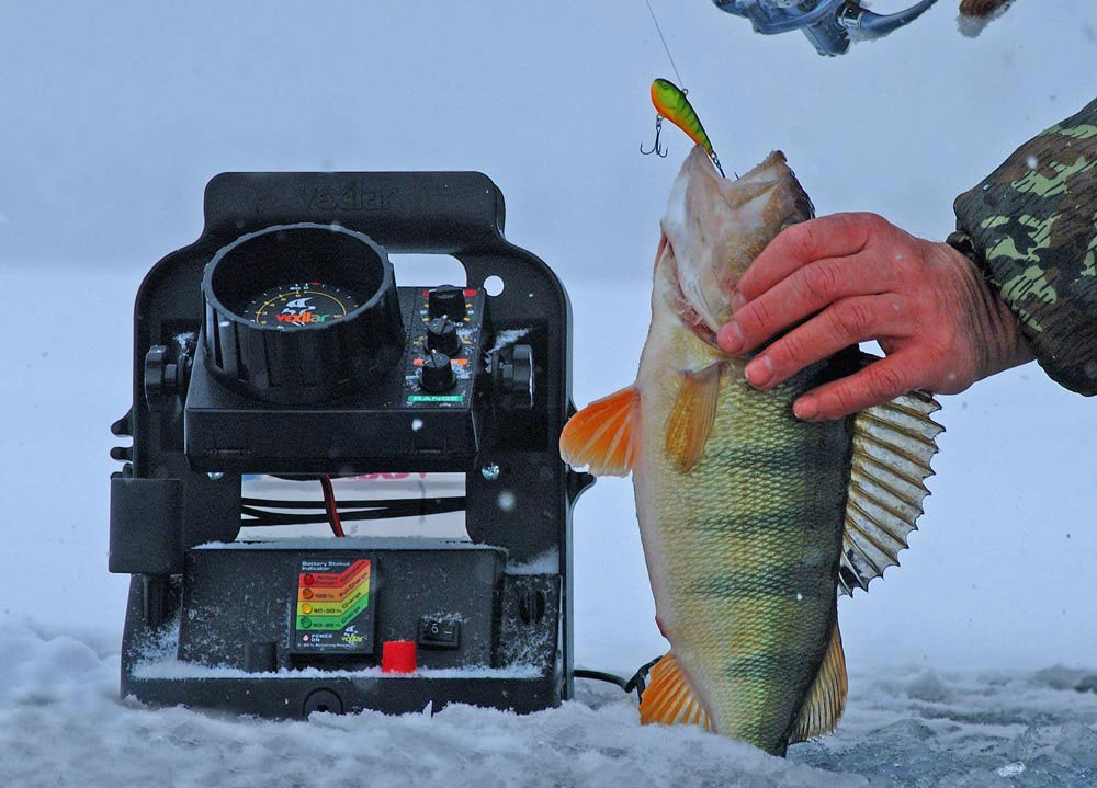 Зимния рыбалка эхолот