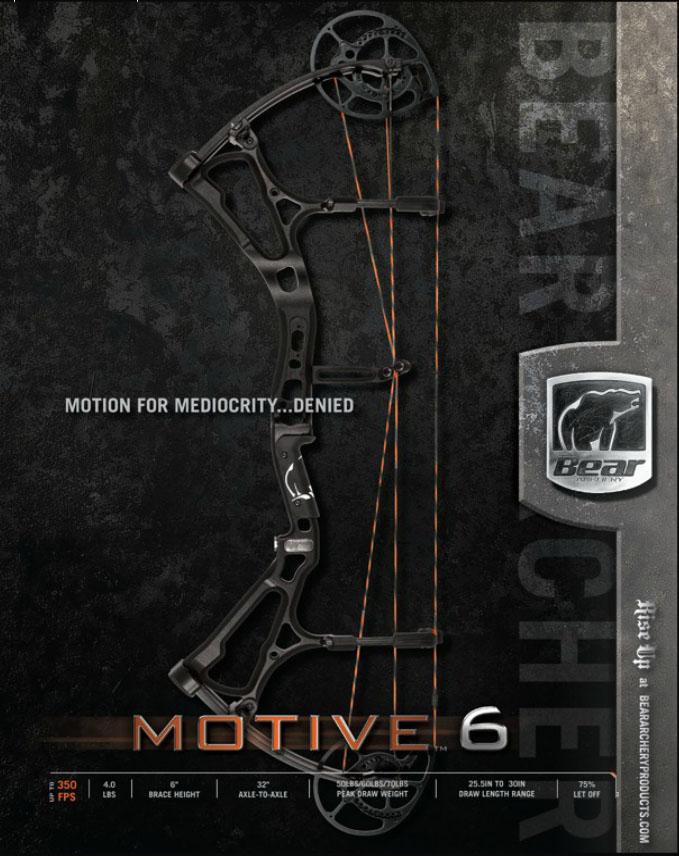 BEAR MOTIVE-6