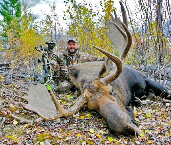 Охотничьи луки HOYT 2014, Купить луки HOYT ARCHERY, выбрать лук для охоты