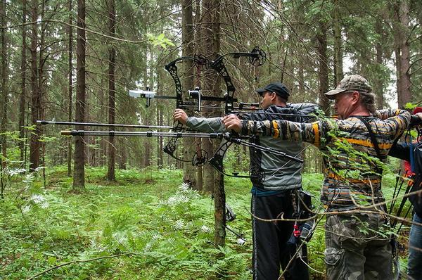 Соревнования по стрельбе из лука 3D-archery