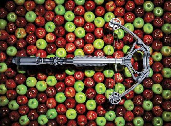 Рейтинги охотничьих арбалетов и рейтинги охотничьих луков 2013