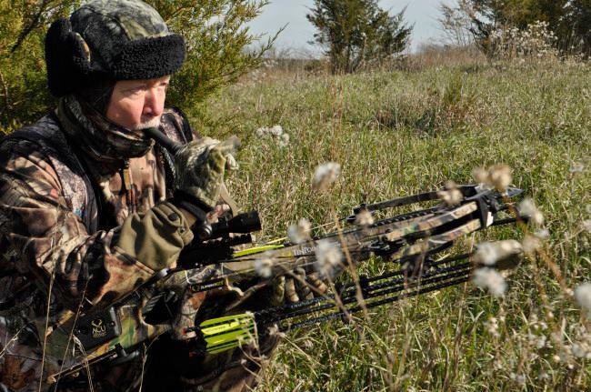 Охота с арбалетом в России, охота с арбалетом crossbow hunting