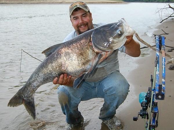 Боуфишинг - Охота с луком на рыбу - Bowfishing AMS - Приспособления для боуфишинга и охота с луком на рыбу